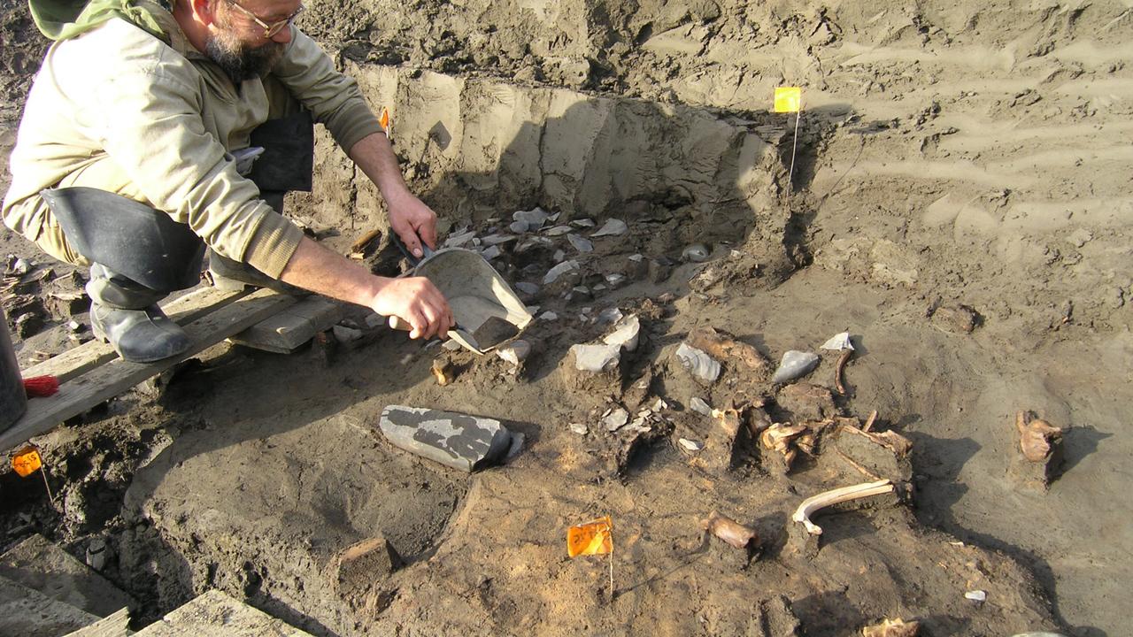 ДНК из древних костей и зубов раскрыла историю заселения Восточно-Сибирской Арктики