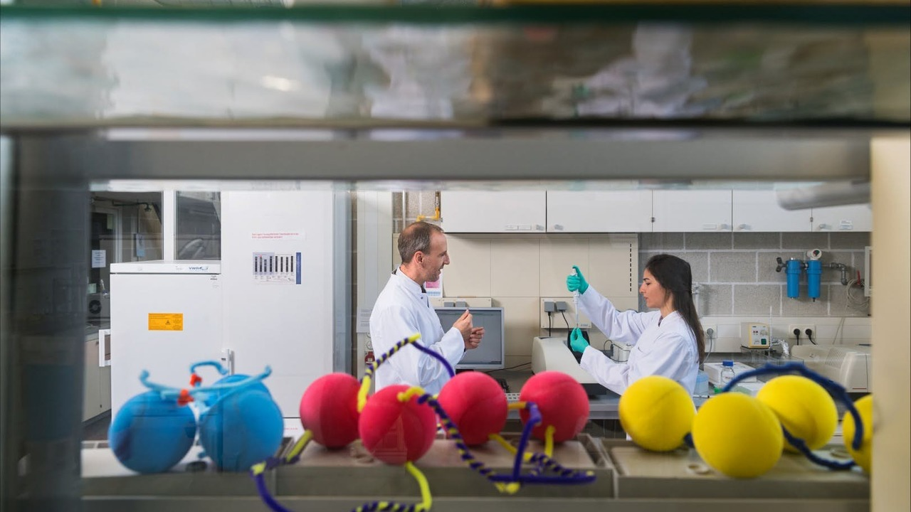 Высвобождение активных ингредиентов из медикаментов доверят искусственной ДНК
