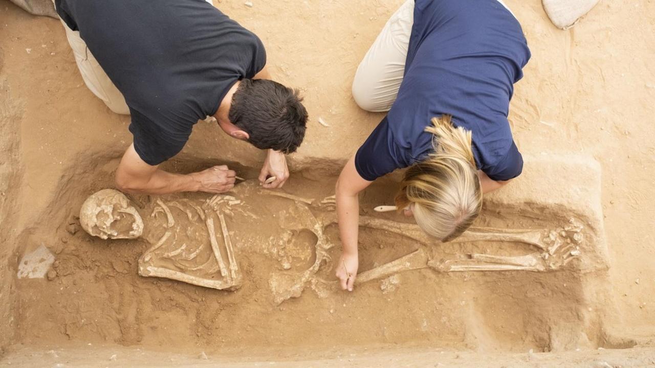 Генетики выяснили происхождение главных библейских злодеев – филистимлян