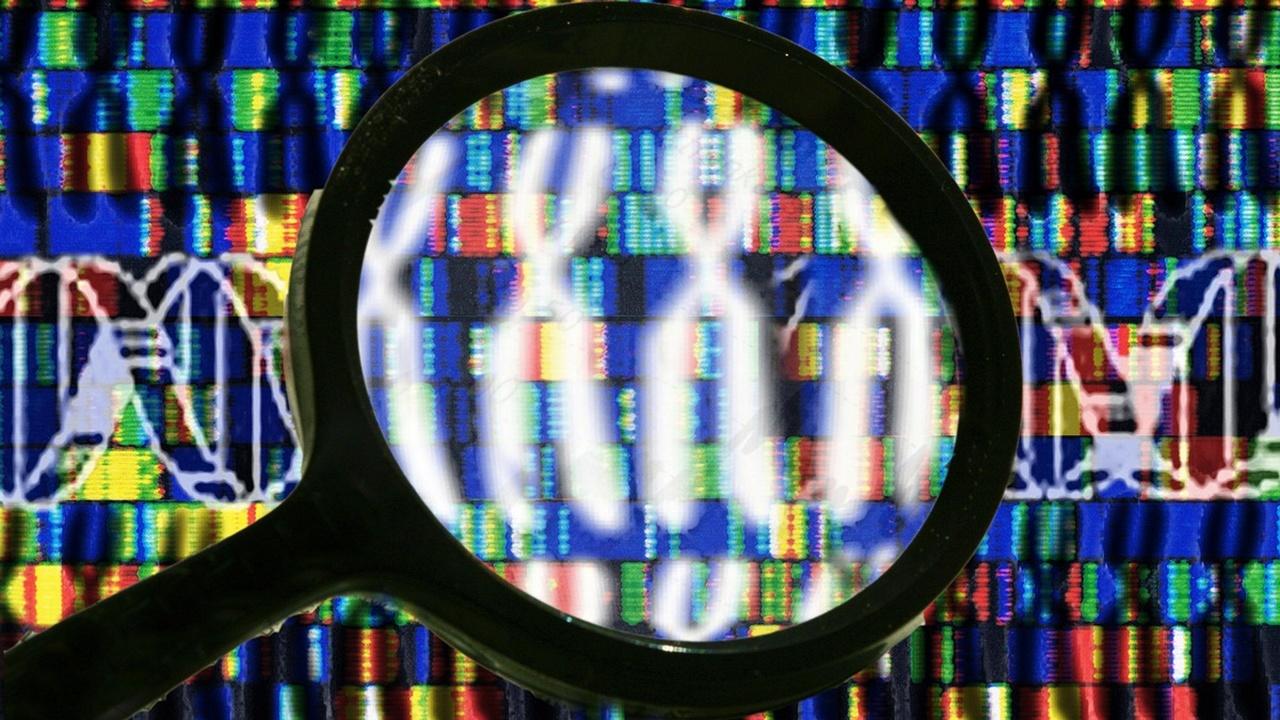 """Повлиять на пол потомства поможет новый метод """"сортировки"""" сперматозоидов"""
