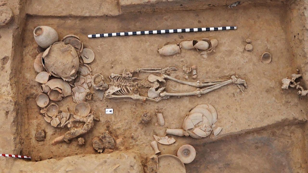 Земледелие, языки и загадочная цивилизация: результаты крупнейшего исследования древней ДНК
