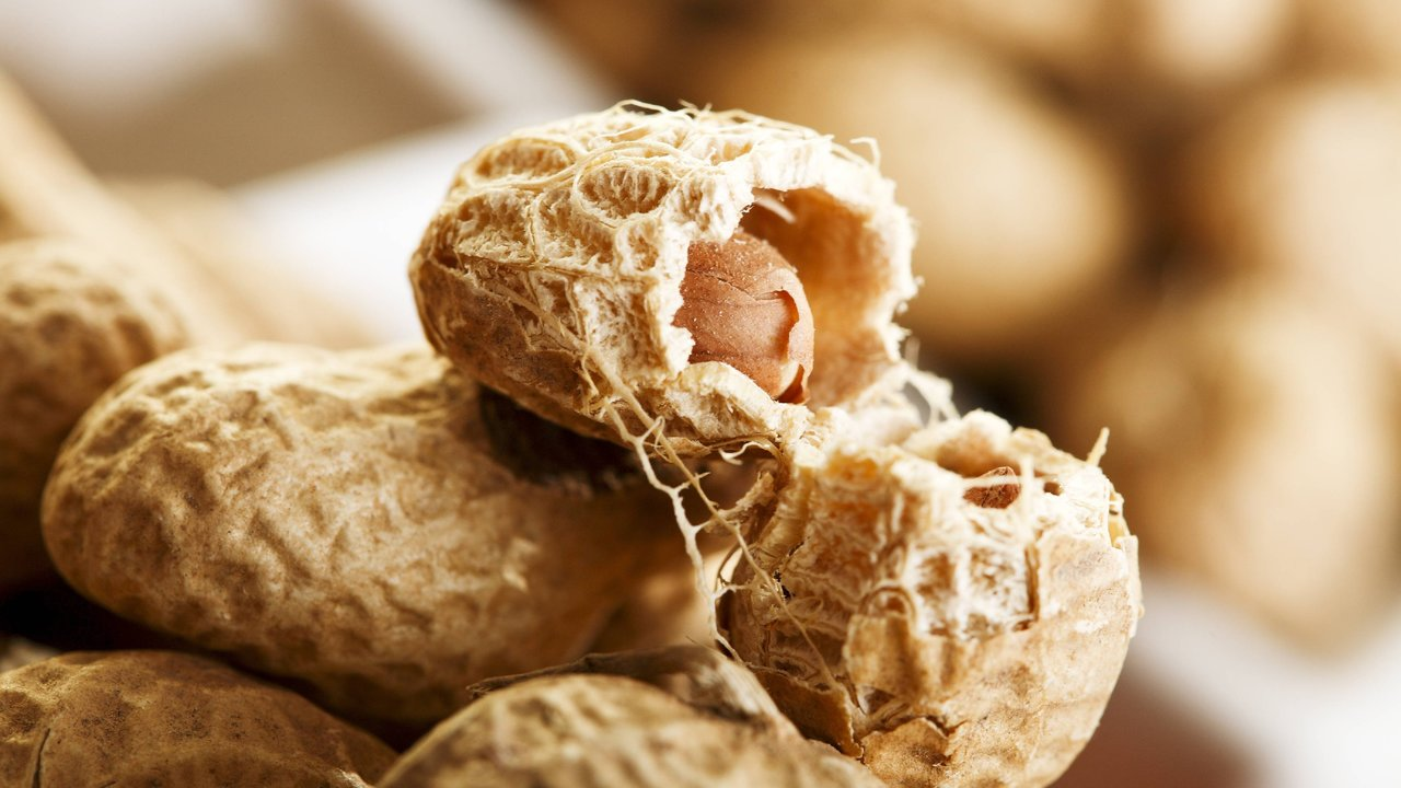 Первый препарат для лечения аллергии на арахис получил поддержку экспертов США