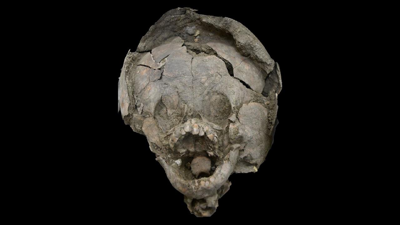 """В Эквадоре найдены 2000-летние останки младенцев в """"шлемах"""" из черепов других детей"""