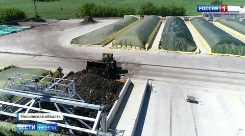 Российские свалки превращаются в биореакторы