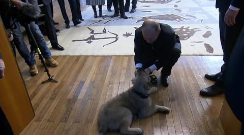 Вучич подарил Путину щенка Пашу