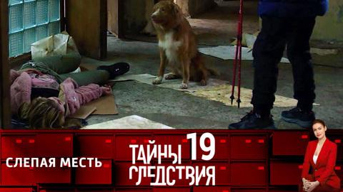 Тайны следствия-19. Слепая месть