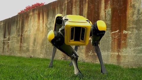 Разработчик роботов Boston Dynamics может опять сменить владельца