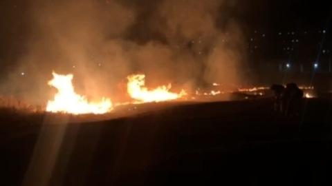В Волжском районе пожарные тушат траву на площади более 1,5 тысяч квадратных метров