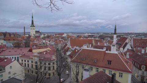 В Эстонии отклонили идею референдума на тему брака