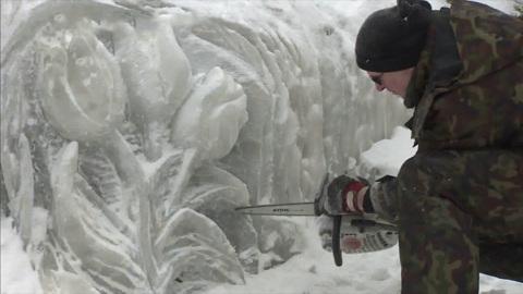В выборгском парке Монрепо появились ледяные барельефы