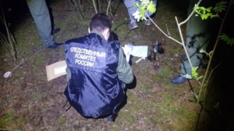 Тело 12-летней девочки обнаружено в лесополосе под Нижним Новгородом