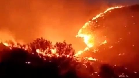 В Греции фронт пожара приближается к объектам Древней Олимпии