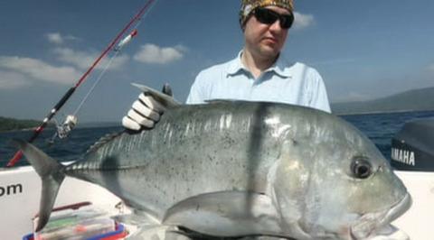 Диалоги о рыбалке. Андаманские острова. Акула