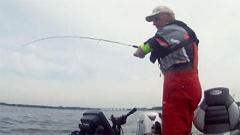 Моя рыбалка. Голландия 1
