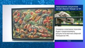 В ГМИИ имени Пушкина открылась футбольная выставка
