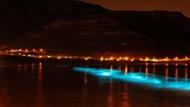 Учёные разобрались в физическом механизме свечения ночного моря.