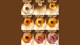 Последовательность образования металлической воды на капле натрий-калиевого сплава. Она окрашивается в золотой цвет по мере того, как электроны и катионы металлов перемещаются в слой воды.