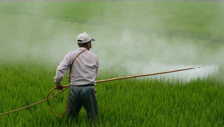 Некоторые исследования показывают, что сельскохозяйственные работники подвержены риску развития неходжкинской лимфомы