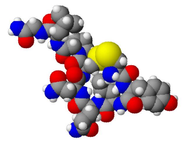 Окситоцин моет быть идеальным лекарством, спасающим мышцы от старения и возрастных заболеваний, поскольку не повышает риск развития рака