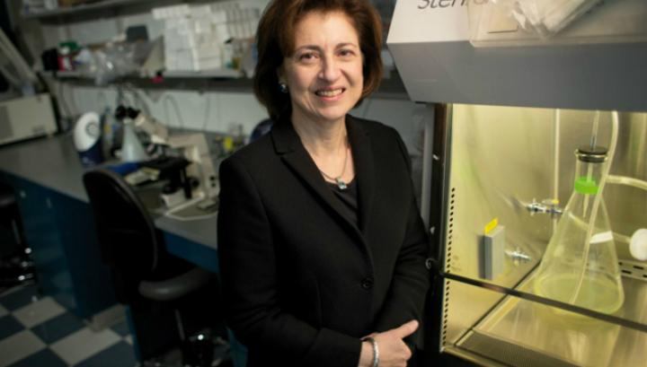 Сюзанн Топалян, предложившая использовать иммунотерапию против рака