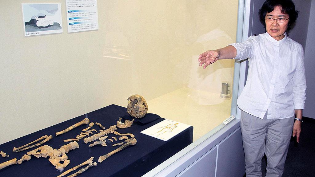 В мае 27000-летний скелет с острова Ишигаки был представлен в экспозиции музея г. Нишихара. Фото: KYODO