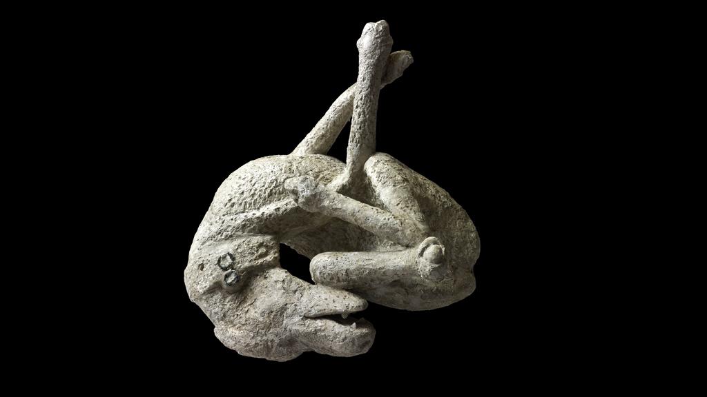 Собака из дома Орфея в Помпеях. Фото: Parco Archeologico di Pompei