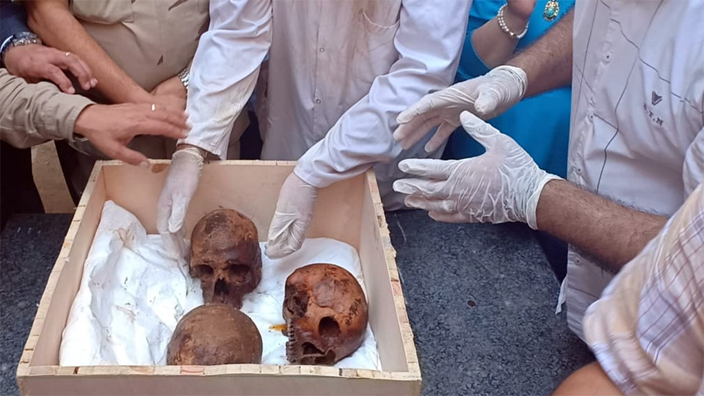 Обнаруженные в саркофаге останки. Фото: Egyptian Ministry of Antiquities