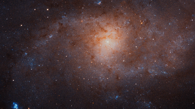Галактика М33 была среди шести звёздных систем, рассмотренных авторами работы.
