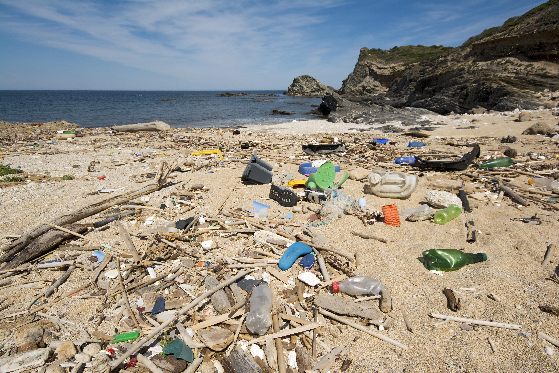 Австралийские учёные призывают общество в очередной раз задуматься об угрозе пластика. Исследование показывает, что она действительно касается каждого из нас.