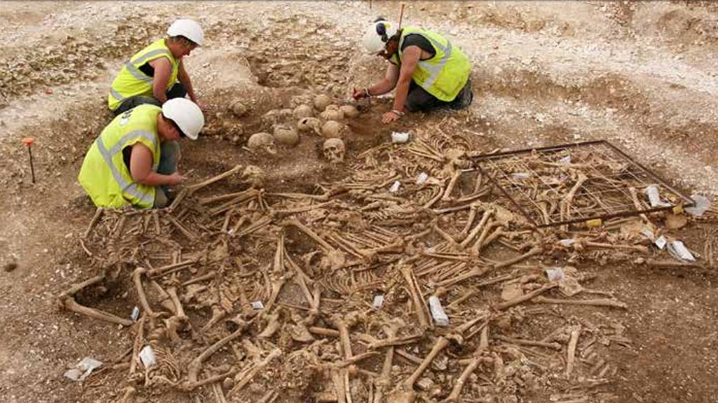 Массовое захоронение эпохи викингов (X век), найденное при строительстве новой дороги в Дорсете. Фото: Historic England