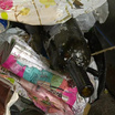 В Карелии контейнеры для мусора хотят покупать за счёт жильцов