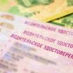Водительские права в РФ могут измениться