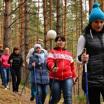 Сандинавская ходьба: дешёвое удовольствие
