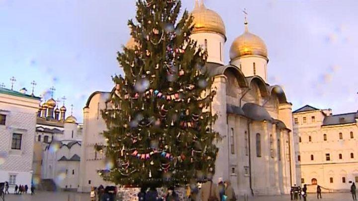 Главную ёлку страны установили на Соборной площади Московского Кремля