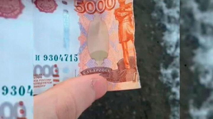 Водитель маршрутки разорвал пятитысячную купюру школьника