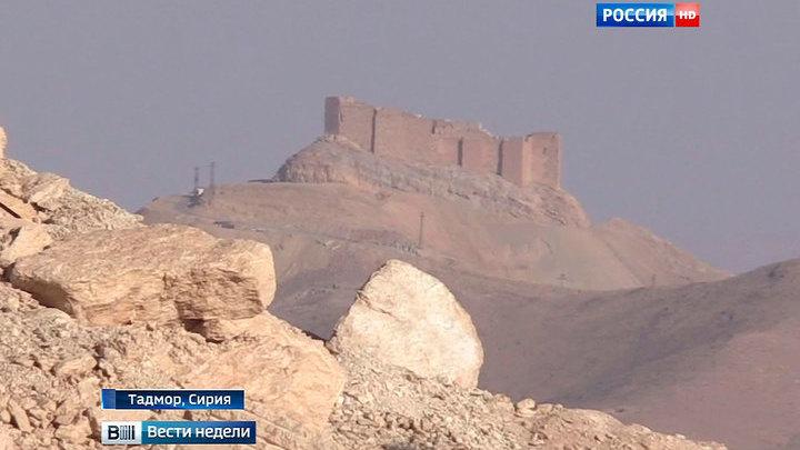 Террористы превратили древнюю Пальмиру в мощный укрепрайон