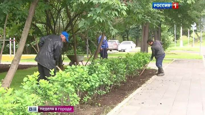 Московские парки предлагают активный отдых для всей семьи