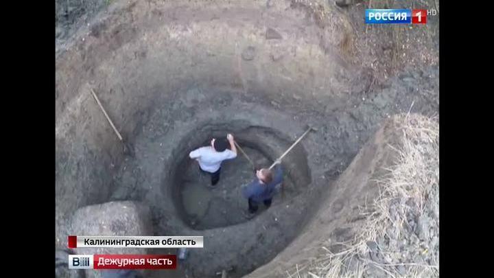 Узбек гонялся за жителями калининграда, чтобы найти друзей к.