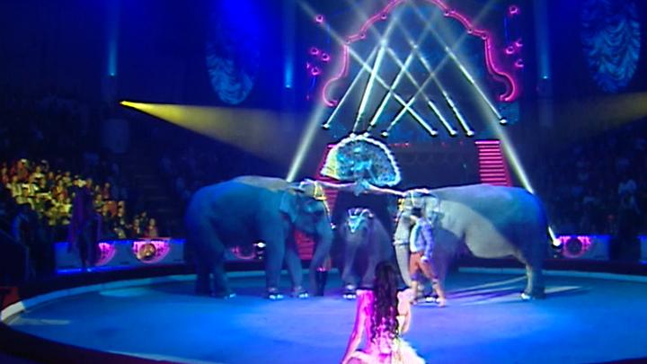 В столице завершился Молодежный фестиваль-конкурс циркового искусства