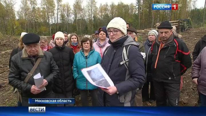 русское порно школьницы в лесу фото