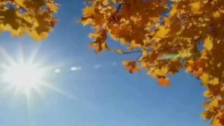 Прощаемся с осенью под мелодии неповторимого Фаусто Папетти