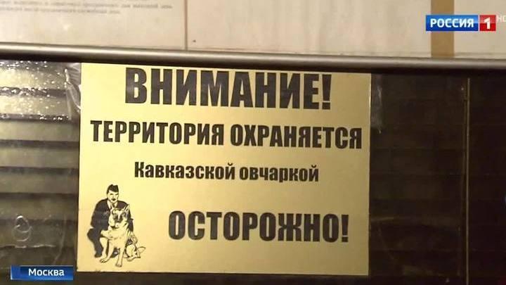 В Москве охранные собаки растерзали пенсионерку: сотрудник ЧОПа задержан