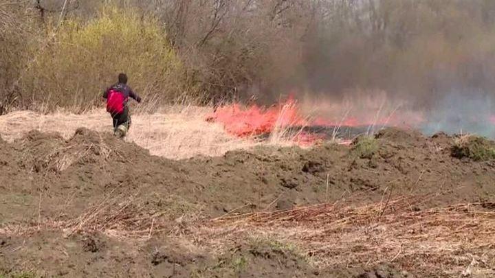 В Свердловской области от страшного лесного пожара спасен поселок Кедровка