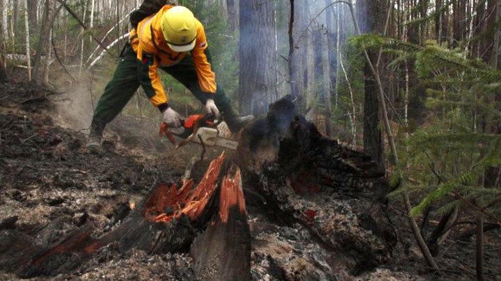 Площадь лесных пожаров в Бурятии растет
