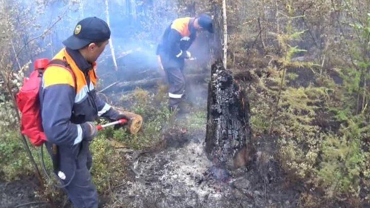 На борьбу с возгораниями в Якутию прибыли сто авиапожарных