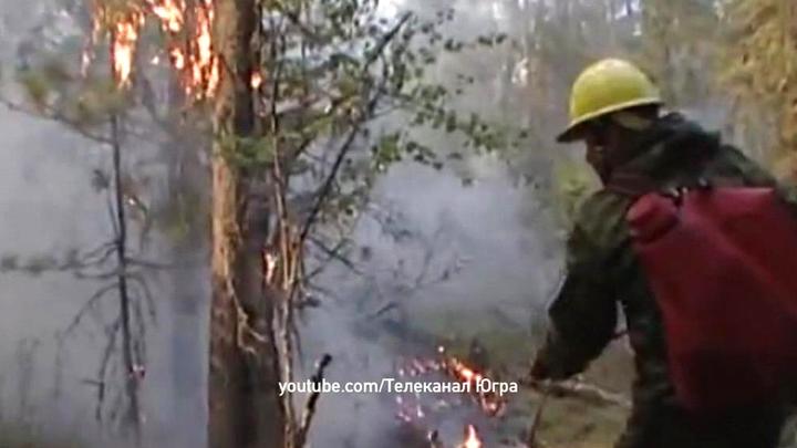 В Ханты-Мансийском автономном округе введен режим ЧС из-за пожаров