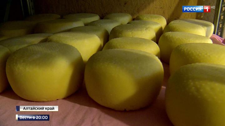В России научились делать итальянский сыр и разводить норвежскую форель
