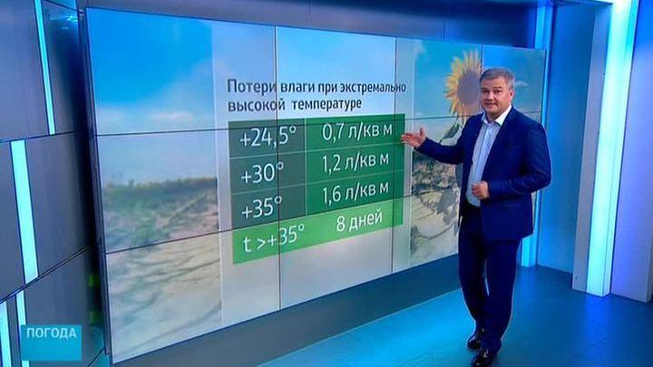 """""""Погода 24"""": Ростов-на-Дону в огне"""