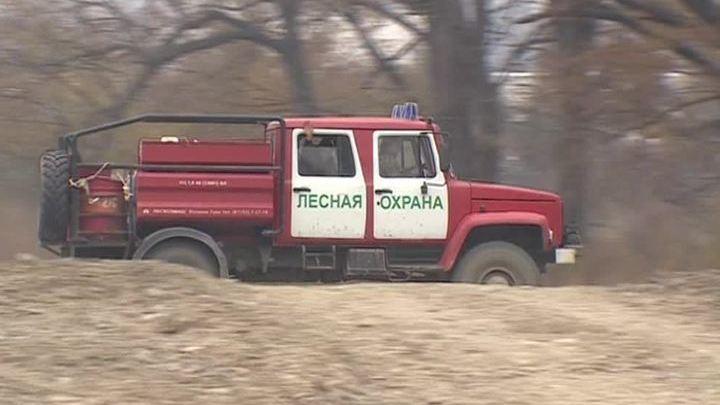 Пожары в Приморье: в регионе действует особый режим