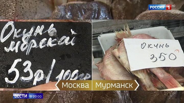 Вопрос о рыбе задал Путину не журналист